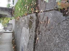 Ardeevin Footpath